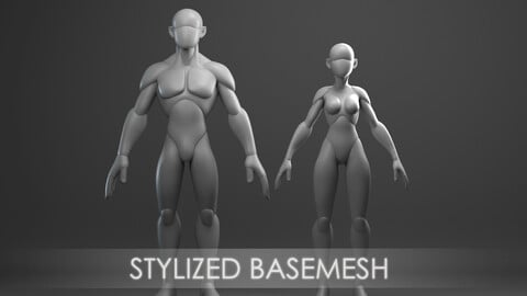 Stylized basemesh ( male / female )