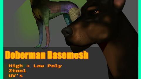 Doberman Dog Base Mesh