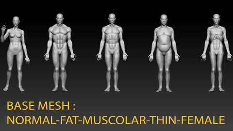 BASE MESH - 5 DETAILED MESH TO START - MALE - FEMALE - FAT - MUSCOLAR - THIN - NORMAL