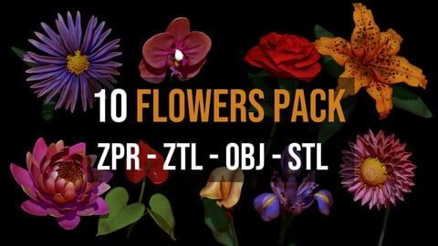 10  Flowers 3D Pack For Zbrush - Including ZPR, ZTL, OBJ, STL