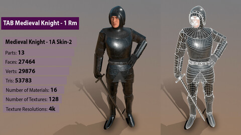 TAB Medieval Knight - 1Rm A - Skin2