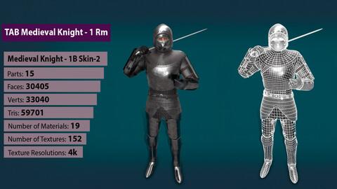 TAB Medieval Knight - 1Rm B - Skin2