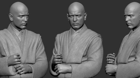 Decimated Obi Model for Study - 3D Printing - Hair Generation