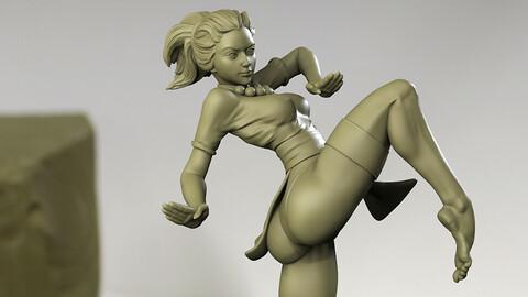 Fighter Girl !!