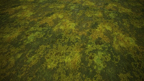 Tileable Moss | Substance Designer