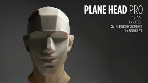 Plane Head Pro Bundle: Model + PDF Booklet + Cheat Sheets