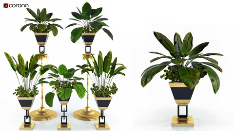 Decorative Plant Set Vol 1