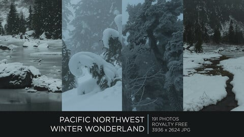 PACIFIC NORTHWEST WINTER WONDERLAND | PHOTOPACK