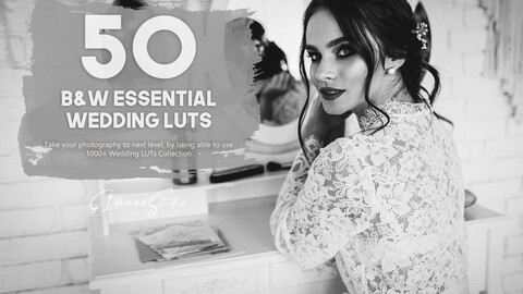 50 Black and White Essential Wedding LUTs Pack