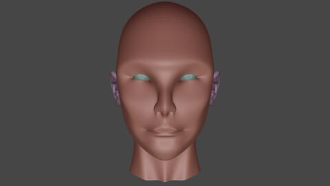 Head-Eye-Ear 3D Model - Blender