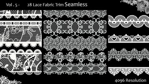 Vol. 5   -  28 Lace Fabric Trim Seamless - Alphas