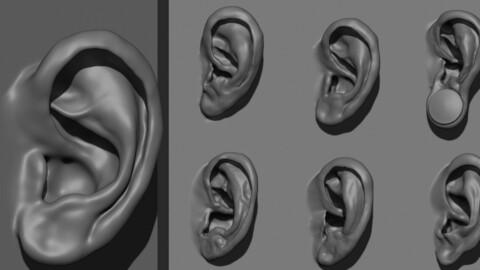 Multi Ear VDM brush