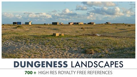 DUNGENESS - LANDSCAPES
