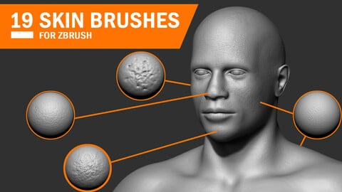 19 Skin Brushes for Zbrush