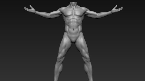 Male Full Body Sculpt Pose 11