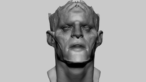 Fantasy Creature Head 05