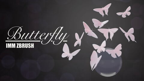 IMM Butterfly Set