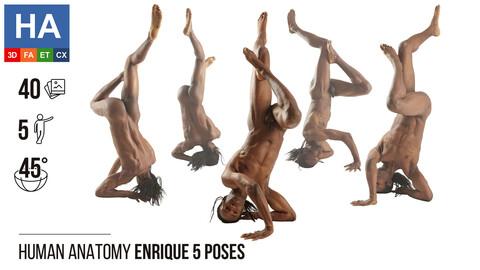 Human Anatomy | Enrique 5 Gymnastic Poses | 40 Photos