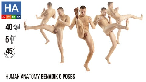 Human Anatomy | Benadik 5 Fighting Poses | 40 Photos