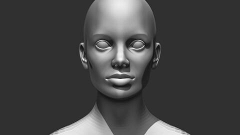 Female Head Realistic Base Mesh #2 3D Model