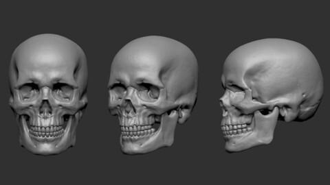 JMLSilver - Skull.OBJ