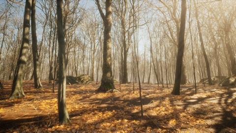 Dark Forest Pack for UE4.26