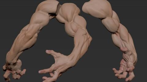 Arms Gesture1