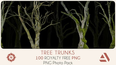 PNG Photo Pack: Tree Trunks