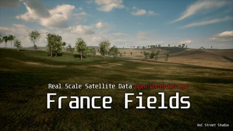 France Fields - Real Scale Satellite Data (UE4 Open World)
