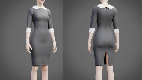 Plaid collar dress - 3D female dress