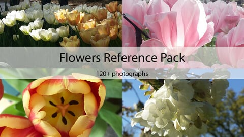 Flowers Reference Pack