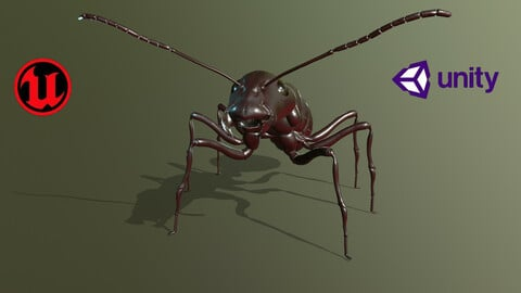 Worker_Ant