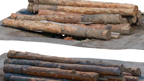 Logs 196