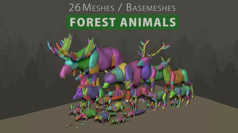 3D Animal Basemesh - Forest Pack