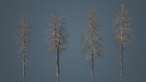 Tall Dead Trees Pack