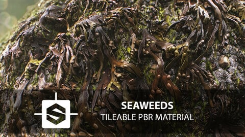 Seaweeds Tileable PBR Material