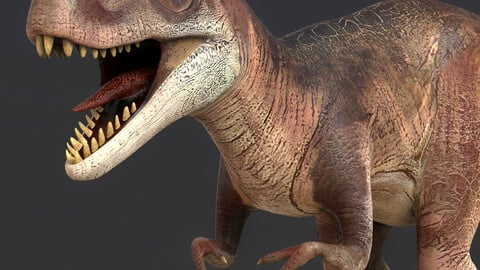 Young Trex Dinosaur 3D Model