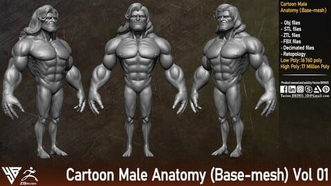 Cartoon male Anatomy (Base-mesh) Vol 01