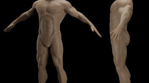Anatomy Sculpt