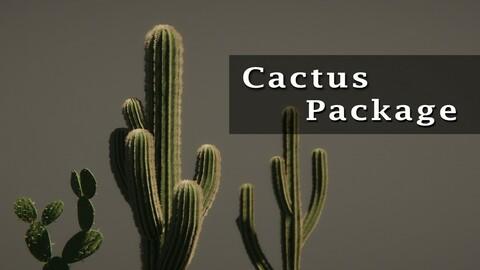 Cactus Package