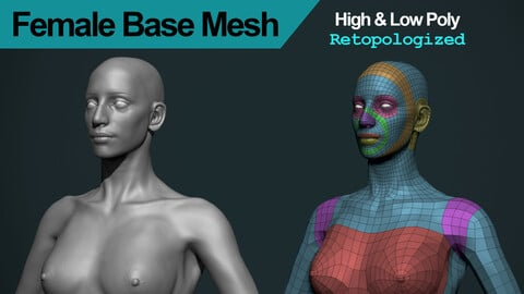 Female Base Mesh (High and Low Poly)