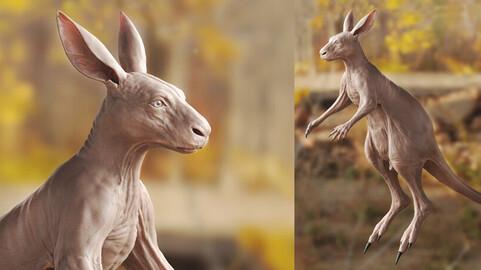 KANGAROO- sculpt/retopology/uvs