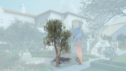 3D olive tree olea europaea decorative a
