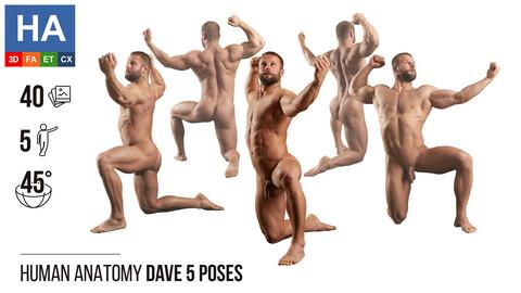 Human Anatomy |  Dave 5 Various Poses | 40 Photos