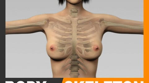 Human Female Body and Skeleton - Anatomy