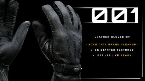 Leather Gloves 001