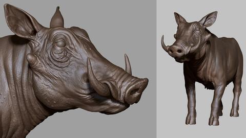 WILD BOAR / PIG - sculpt/retopology/uvs
