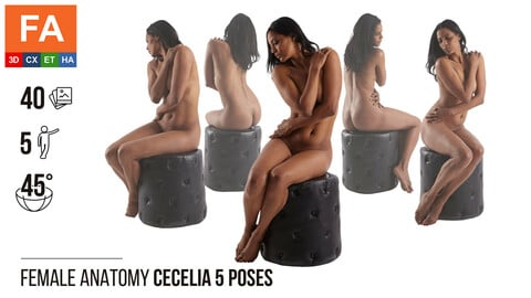 Female Anatomy | Cecelia 5 Various Poses | 40 Photos