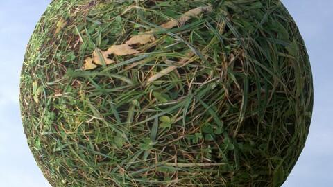 Grass 2 PBR Material