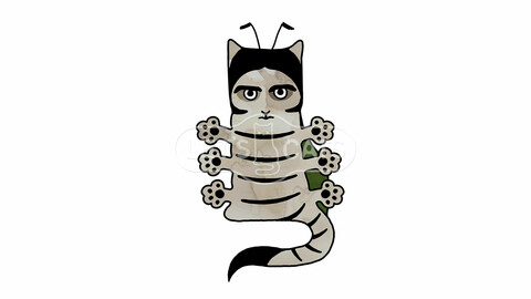 Cat insect